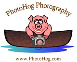 PhotoHog Photography