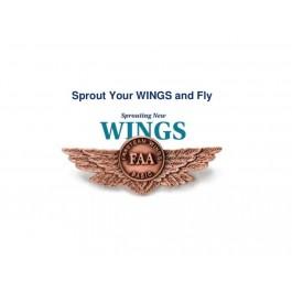 FAA Wings Program